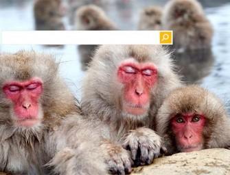 Ciudadanos, Podemos y eclipses, las otras búsquedas de Bing