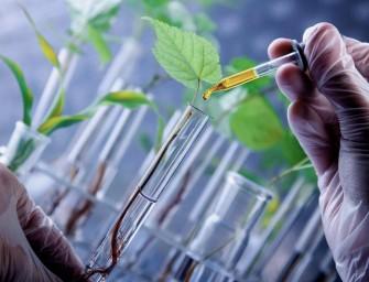 Una empresa de biotecnología para agricultura segunda financiada por La Bolsa Social