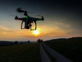 Águilas surcarán el cielo holandés en busca de drones hostiles