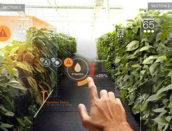 Nuevo estudio de realidad aumentada para salvar el planeta
