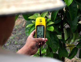 El sector agroalimentario, muy tecnificado pero poco digitalizado